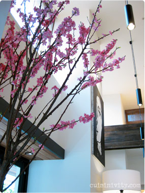 AW Kitchen Interior, plum blossom