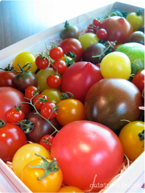 assorted tomato gift box