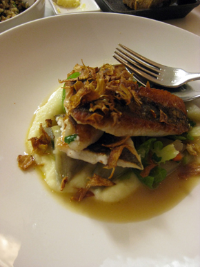 John Dory, artichokes barigoule and nettle
