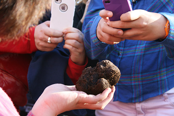 wow, big truffle