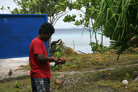 cracking coconuts, Bikirin Island, The Marshall Islands