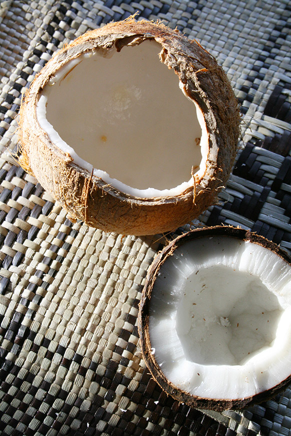 coconuts seed