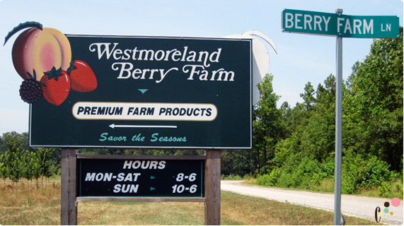 Westmoreland Berry Farm road sign