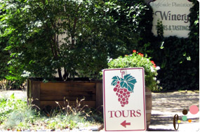 Wine tasting and shop entrance
